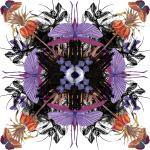 Fearful Symmetry by Rhiannon Rasmussen-Silverstein