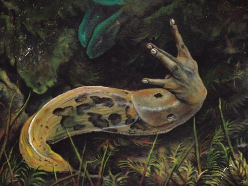 Slug Life by Andrew Ferneyhough